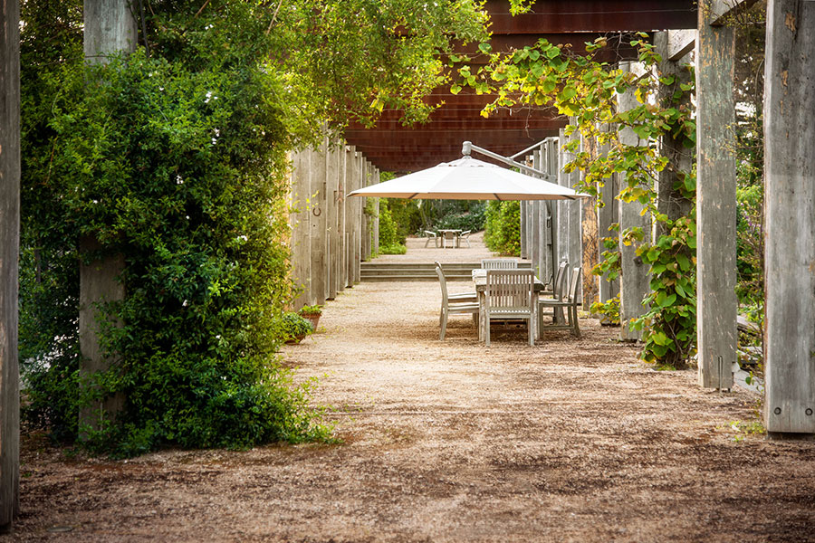 Vine covered pergola perfect for summer entertaining